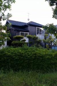 ikeda_o_02