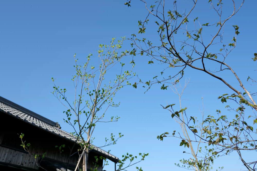 spring2019_05