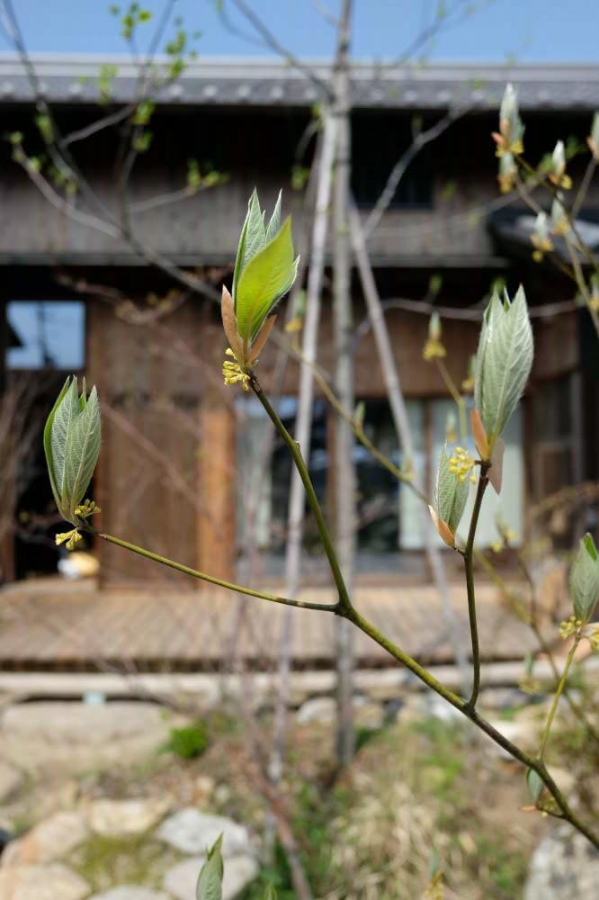spring2019_07